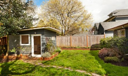 Backyard Shed Ideas That Might Interest You