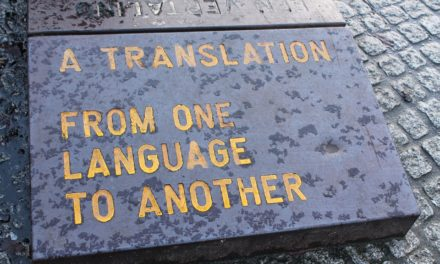 Humour and comic situations in the universe of translation