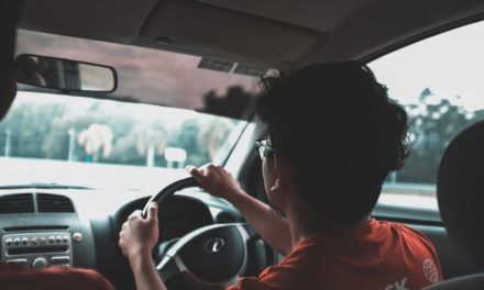 Want to Start a Driving School Business? Here's How