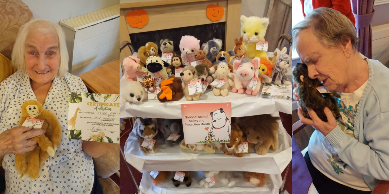 Animal safety month celebrated with soft toy adoptions