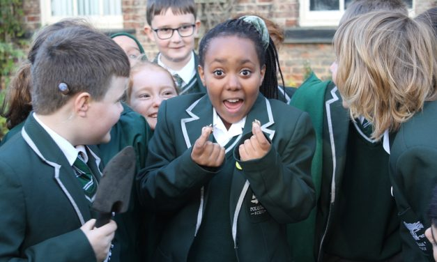 Pupils' efforts to raise awareness of polio are blooming brilliant