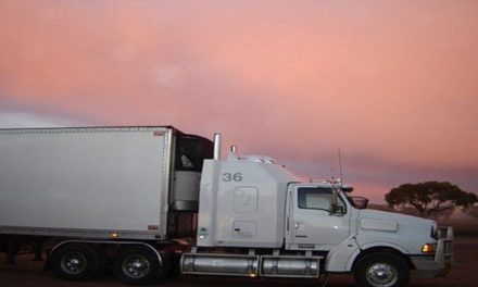 Reasons behind Why You Should Hire long distance movers
