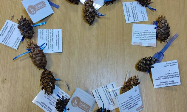 Hartlepool pinecone search raises awareness of charity's great work