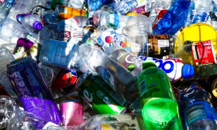 Receipts, kitchen roll, and glasses among things you SHOULDN'T be putting in the recycling