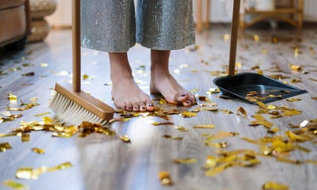Reasons To Get Carpet Cleaning Services