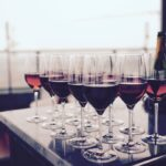 Seven best red wine regions you need to know