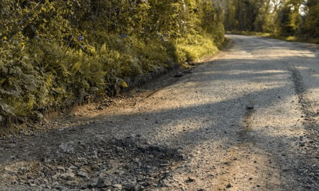 Potholes cause damage to nearly a third of cars on UK roads, finds Citroën