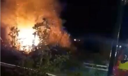 Heartbreak for charity allotment group as community shed destroyed by fire