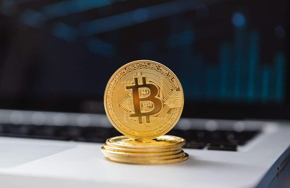 Seeking to Learn About Bitcoin? Here's everything You Need to Know Regarding Bitcoin
