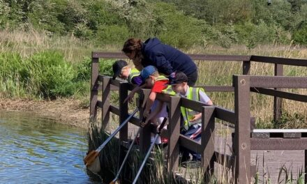Schools urged to go on wild adventures to boost the mental health of pupils