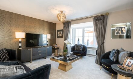 FIRST LOOK INSIDE SHOW HOME AT NEW NORTHUMBERLAND HOMES DEVELOPMENT