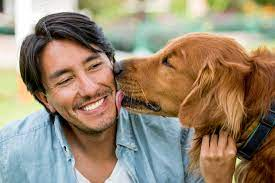 Five Ways Getting a Dog Can Make You a Happier Person