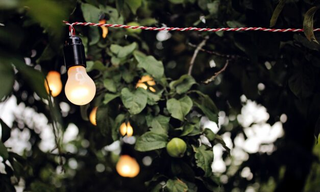 WANT TO BUILD AN ELEGANT OUTDOOR LIGHTING SYSTEM FOR YOUR RESTAURANT?