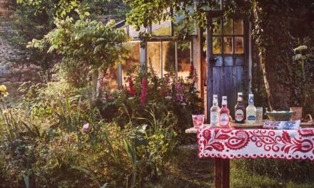 Fentimans appoints Mediaworks to maximise digital awareness