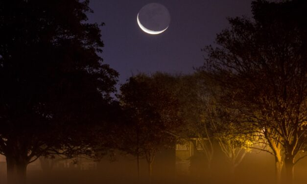 Be ready for the Solar Eclipse and other Astro events this summer! Astro-photographer offers top tips for scintillating shots!