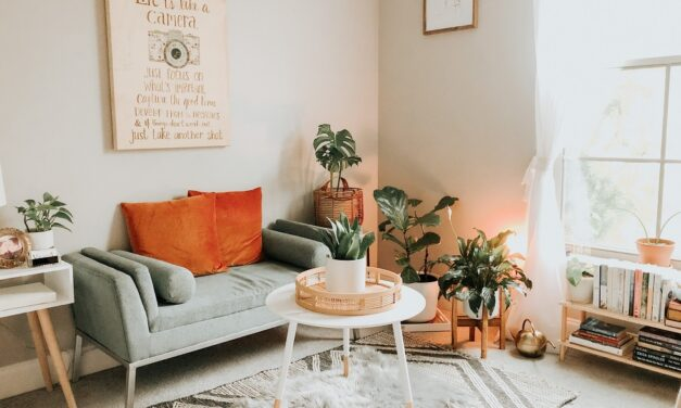 Unusual and practical: Tips for unmissable accessories for the modern living room