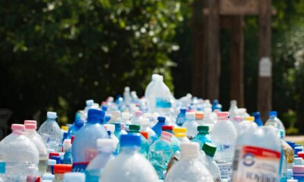 Essential Strategies in Managing Waste for Commercial Establishments