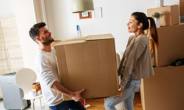 What Made Professional Movers A Must To Hire