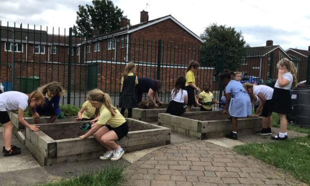Local housebuilder sows the seeds with Tilery Primary School