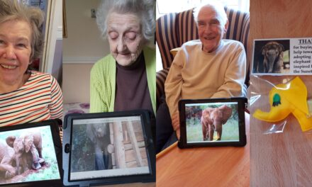 Orphaned elephant adopted by Saltburn care home residents