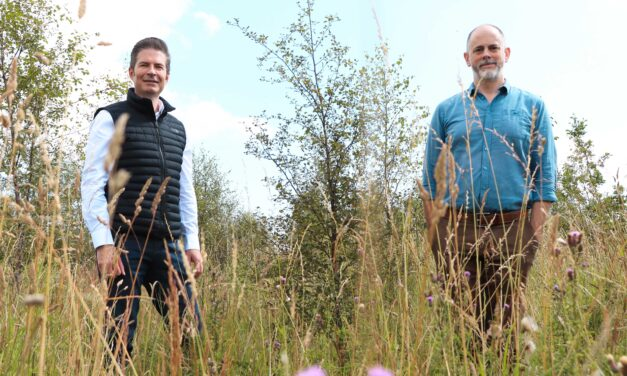Pacifica Group enters woodland creation partnership to support its carbon offsetting targets