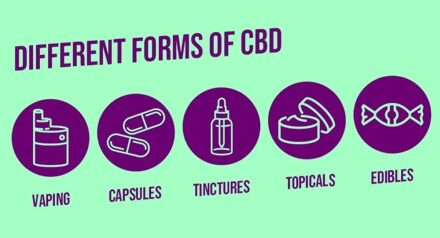 All You Need to Know to Buy CBD Oil Online