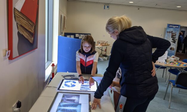 Family-friendly Covid-19 exhibition to go on display at Newcastle Cathedral
