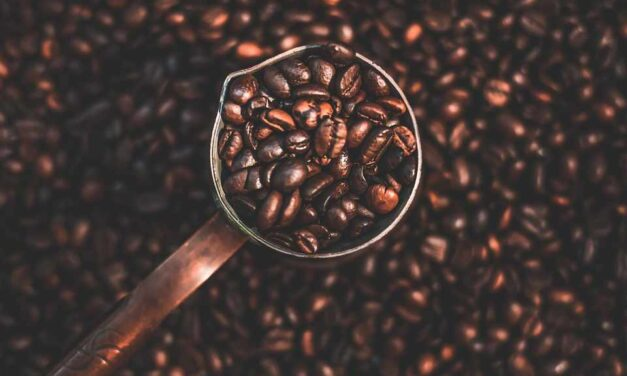 5 factors to mind when shopping for quality coffee