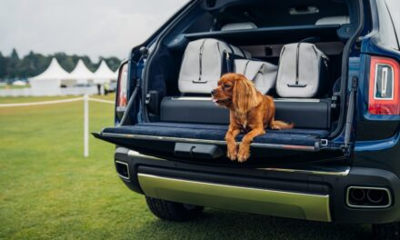 Rolls-Royce Motor Cars celebrates sporting and country pursuits