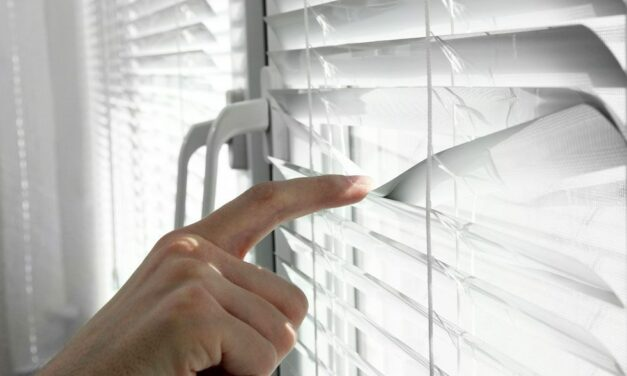 How Motorized Commercial Blinds Can Improve Your Work Environment